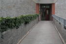 """南京大学外国语学院图书馆""""新元素"""""""