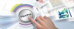 FlexPro高级应用之模板定制