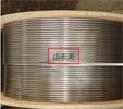由素夫-不銹鋼無縫毛細盤管