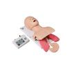 医博士品牌 电子人体气管插管训练模型(带牙齿受压报警)  DM-FA5003  [请填写核心参数/卖点]