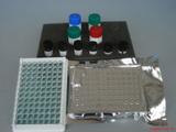 豚鼠TE,端粒酶Elisa试剂盒