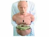 高级成人气道梗塞及CPR模型