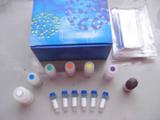 科研牛神经肽Y(NP-Y)ELISA试剂盒