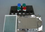 兔子胶原酶I(Collagenase I)ELISA试剂盒