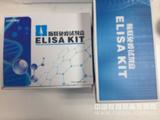 猪gamma干扰素( IFN-gamma)检测试剂盒