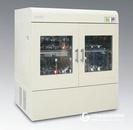 立式双层大容量大振幅恒温振荡器 FA-ZWY-1112D