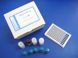 沙丁胺醇一步法ELISA试剂盒