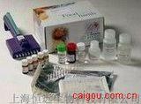 豚鼠内皮素1 ELISA试剂盒
