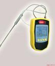 KP172可燃气体检测仪