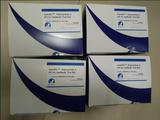 美国Biostone塞尼卡谷/赛尼卡谷病毒抗体ELISA试剂盒 科研试剂
