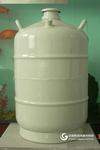 运输型液氮罐 /液氮罐 /液氮罐