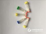 三磷酸肌醇抗体,IP3抗体使用说明书