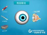 视器解剖软件
