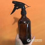 250ml 500ml澆花噴霧玻璃瓶 園藝家用灑水瓶氣壓式噴霧噴水玻璃瓶