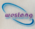 Western Blot/WB/免疫印记/蛋白印记技术服务/实验代测 促销