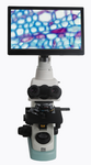 HD200C-F 高清自动对焦HDMI相机