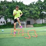 【派迪茵】厂家直销 足球训练配件跨栏架