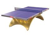 红双喜金彩虹乒乓球台(LED)TCH-G