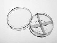 J40204百千生物四分格共聚焦皿TC处理玻璃底厚度0.17mm分格玻底培养皿
