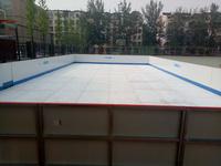 学校教学专用冰壶训练用冰壶球价格