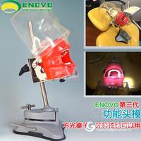 ENOVO颐诺口腔科仿生头模系统齿科备牙牙医培训牙科头模牙齿模型