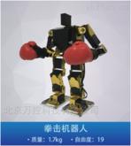 拳擊比賽機器人