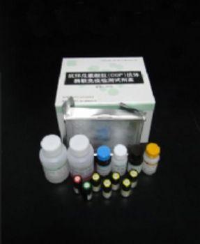 大鼠细胞色素P4502E1(CYP2E1)ELISA试剂盒