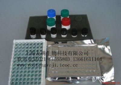 人无形体(HGA)ELISA试剂盒