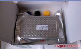 山羊白介素4(IL-4)ELISA Kit