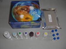 人脱氧尿三磷酸(DUTP)ELISA试剂盒说明书