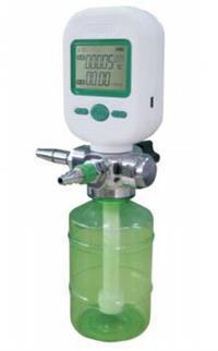 气体质量流量计/微小气体流量计 型号;H09040