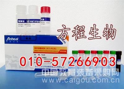 小鼠血管紧张素转化酶(ACE)代测/ELISA Kit试剂盒/说明书