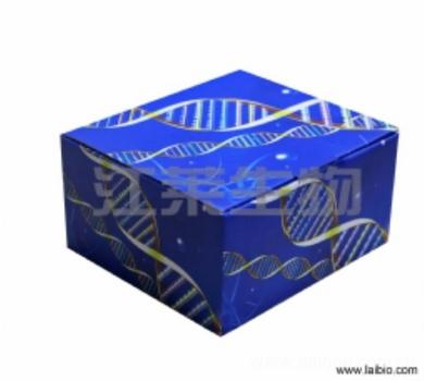 大鼠嗜酸粒细胞趋化蛋白Eotaxin1(Eotaxin1/CCL11)ELISA试剂盒
