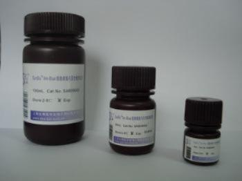DEAE琼脂糖凝胶CL-6B