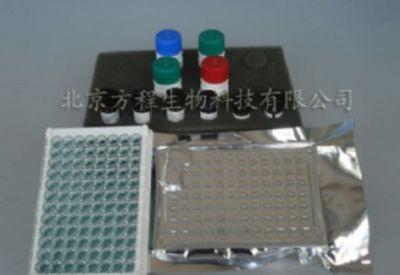 大鼠AFP ELISA测定试剂盒
