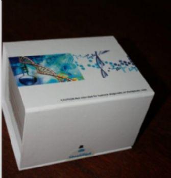 抗滋养层细胞抗体(IgG\IgM)金标试剂盒