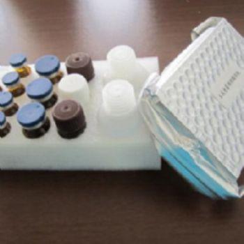 人血吸虫(schistosoma)ELISA试剂盒
