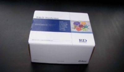 人脊髓灰质炎病毒IgG(PV-IgG)ELISA试剂盒  规格