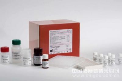 人广谱细胞角蛋白(P-CK)ELISA试剂盒