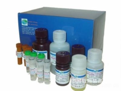人ER试剂盒,ER ELISA KIT,人雌二醇受体试剂盒