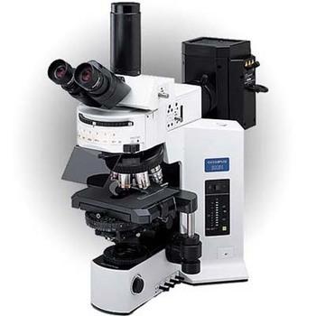 BX51万能研究型显微镜