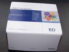 人促甲状腺素释放激素(TRH)ELISA试剂盒