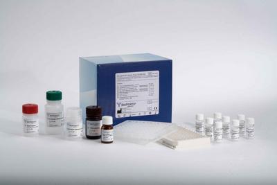 生长激素释放因子  (GH-RF)