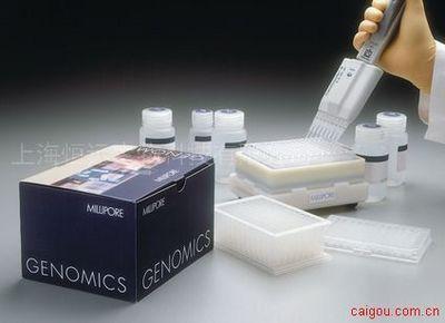 人抗甲状腺球蛋白抗体ELISA试剂盒