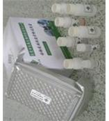 小鼠血纤蛋白原降解产物试剂盒/小鼠FDP ELISA试剂盒