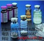 莱克多巴胺(Rac)定量检测试剂盒(ELISA)