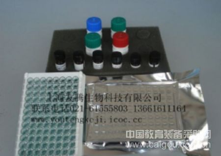 人SH2携带蛋白(SHC/SLP-76)ELISA Kit