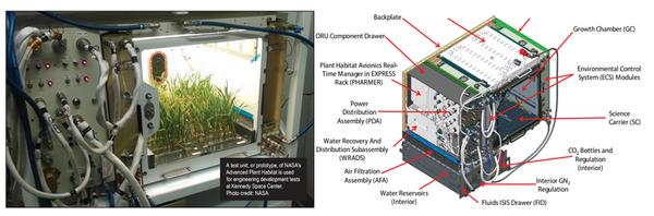 NASA利用FluorPen进行空间生物实验