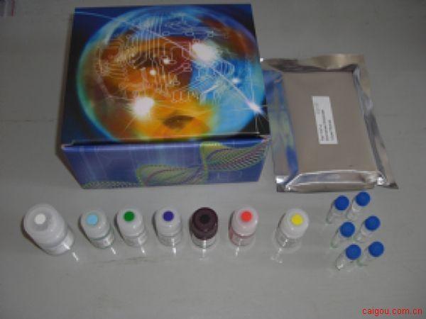 人Tyk-2检测Elisa试剂盒