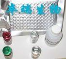 小鼠阿立新A(Orexin A)Elisa试剂盒